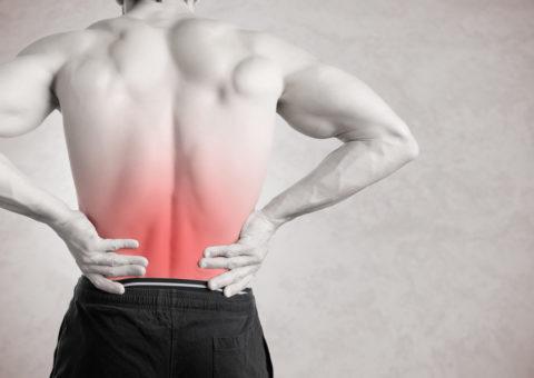 Rückenschmerzen Lendenwirbelsäule